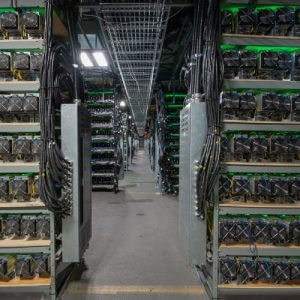 ASIC Vs GPU: Which Is Better for Mining?